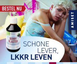 supplement schone lever