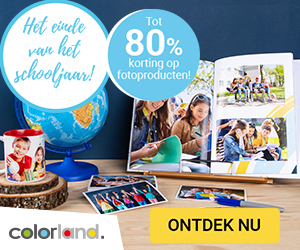 Colorland -80%