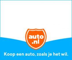 Auto leasen/kopen